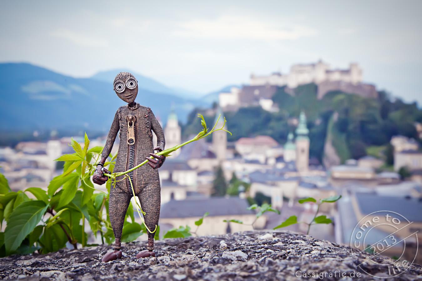 C.T.L.2013 - Salzburg