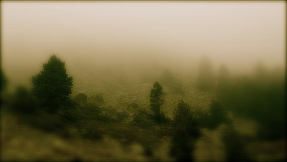 Cuando la niebla se difumina