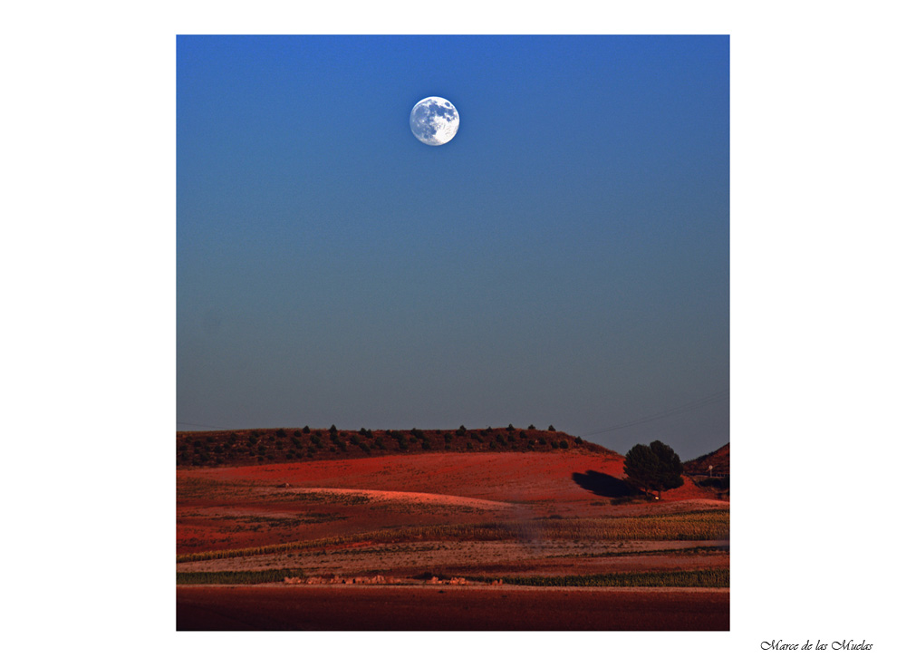 ...cuando salga la luna 2...