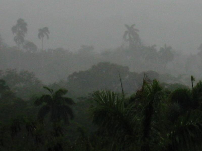 cuba libre: the big rain