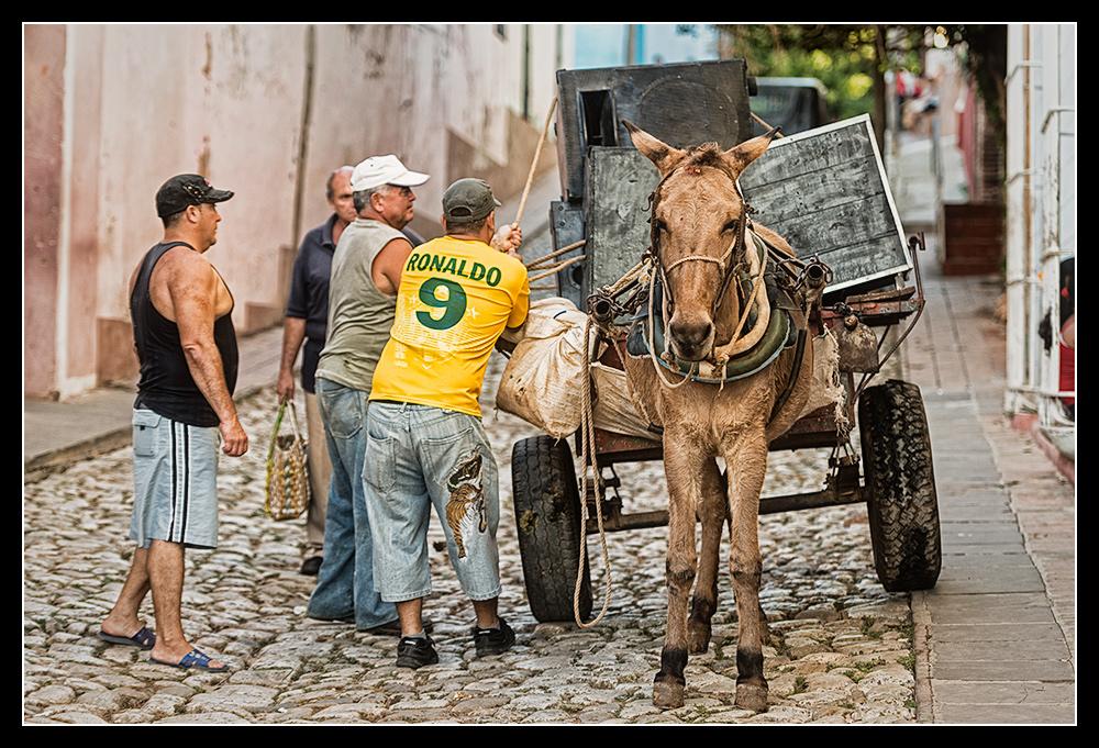 Cuba VII - Ronaldo & der Esel