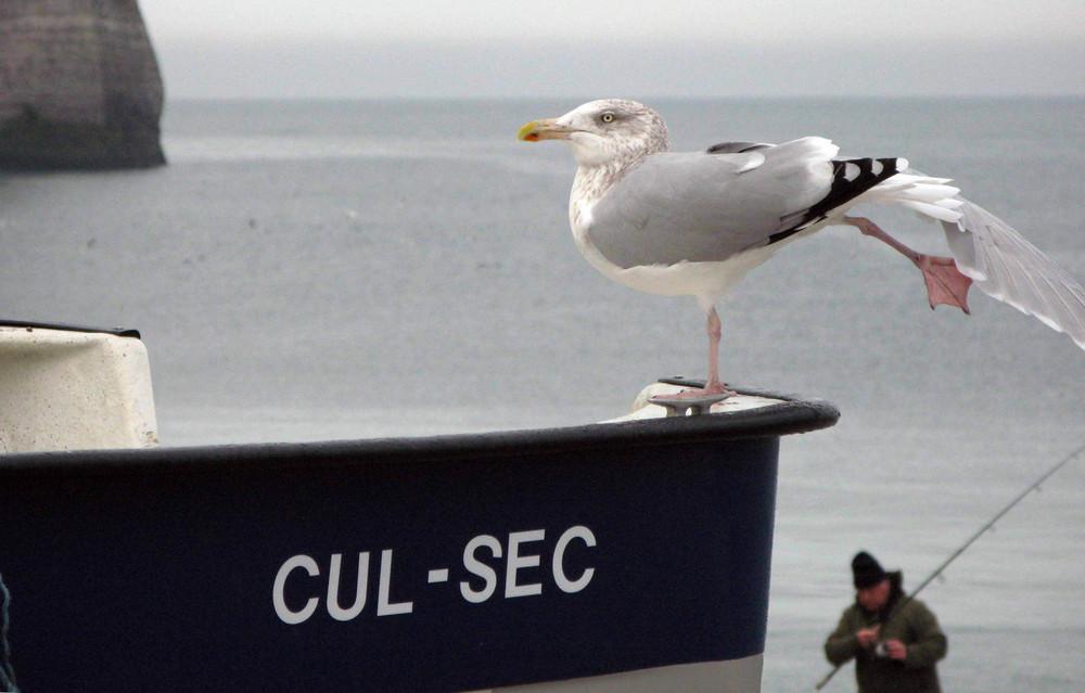 cul-sec