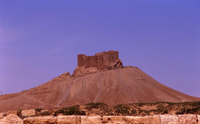 Cultural Palmyra-Syria 4
