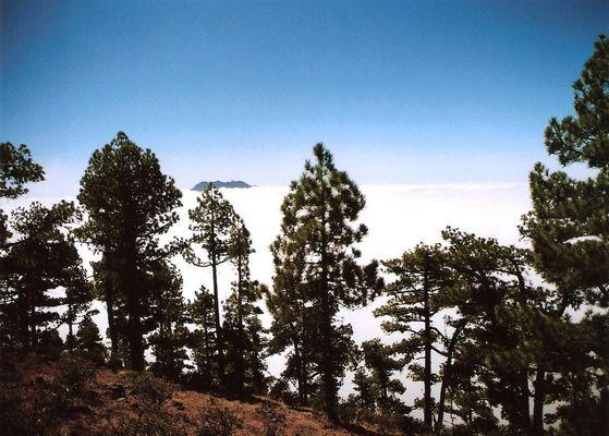 Cumbre Vieja desde el Pico Bejenado