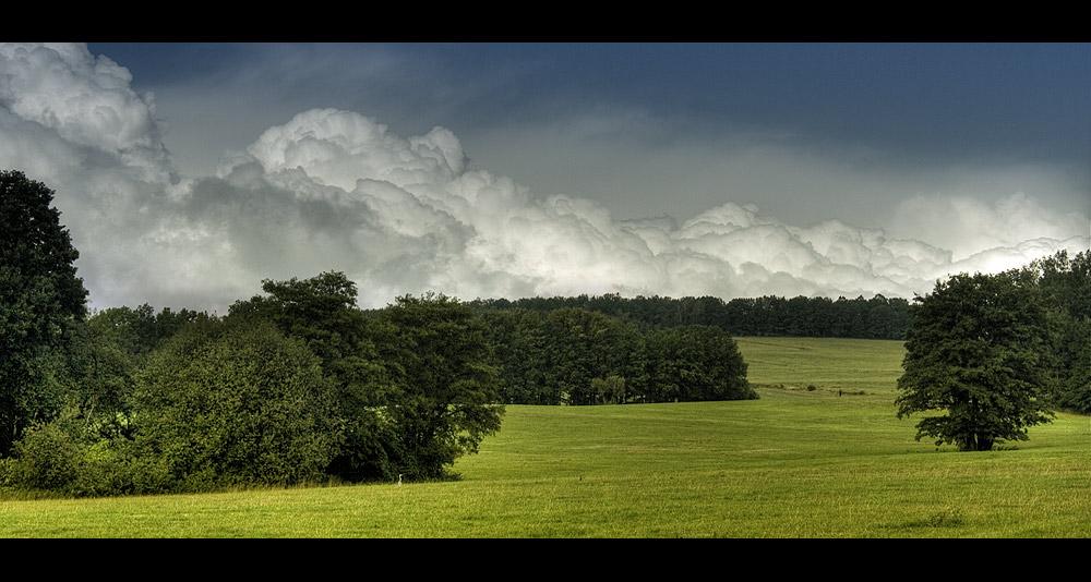 Cumulus congestus 003