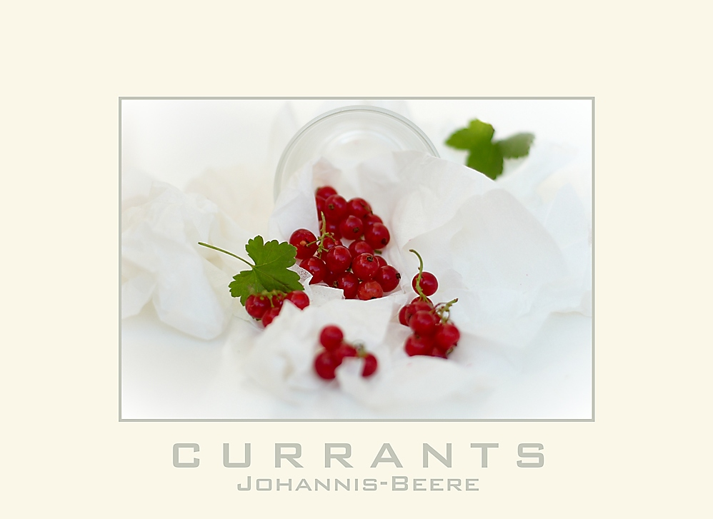 Currants - Johannisbeere