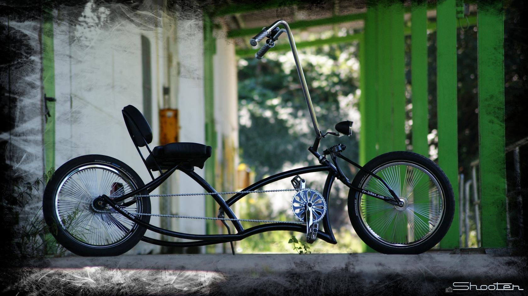 Custom Bike (2)