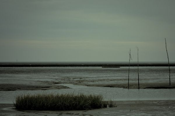 Cuxhaven II