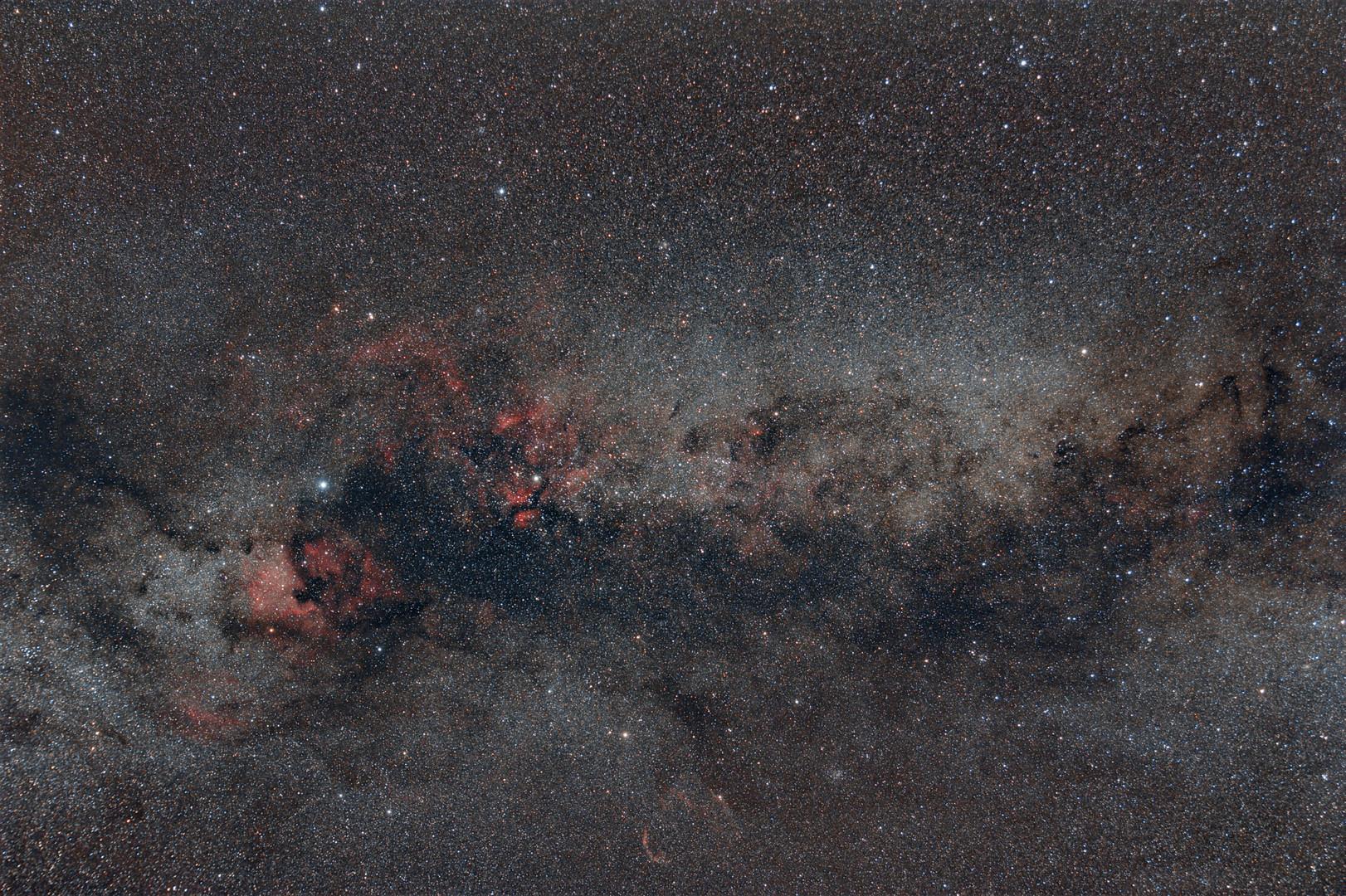 Cygnus - Der Schwan