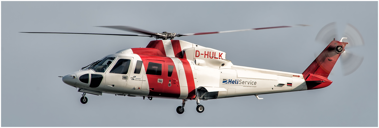 D-HULK