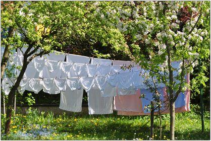 07 - Wäsche auf der Leine