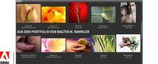 Webinar - Workshop Adobe Bridge von Franzis Verlag
