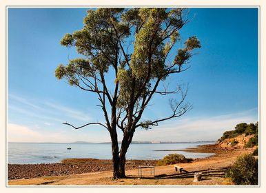 Eyre Peninsula