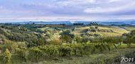 Toscana von W Zopf