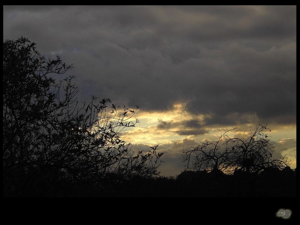 >>> Da ist doch noch ... ein Licht am Himmel!