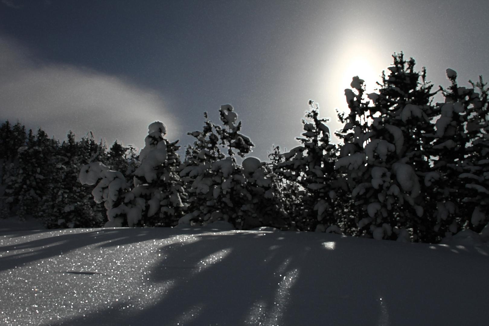 Da leuchten die Sterne im Schnee