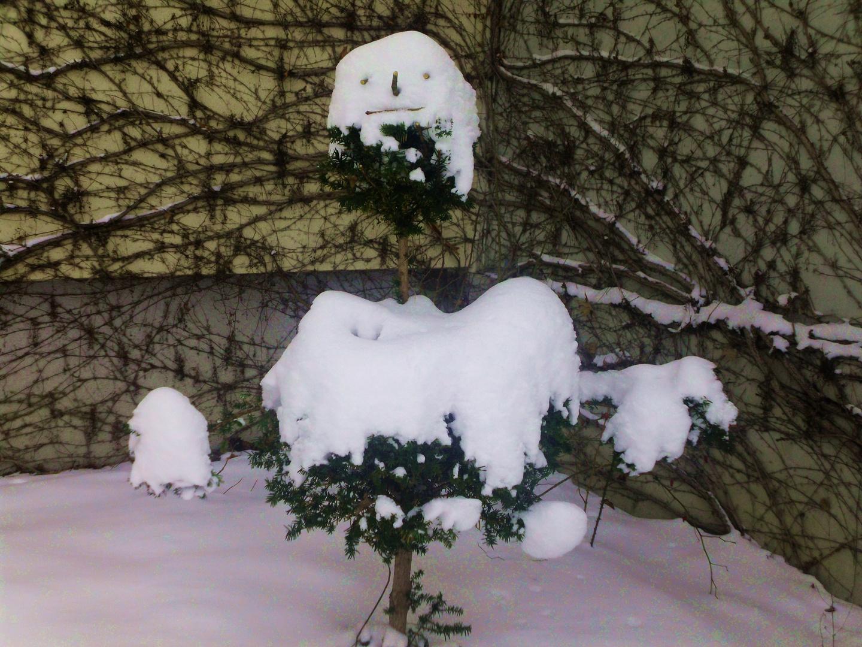 Da war so ein verschneiter kleiner Baum,da bin ich doch gleich mal kreativ gewurden :)