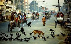Dacca Januar 1982