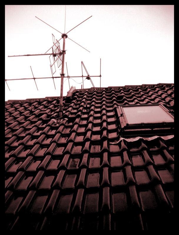 Dach...
