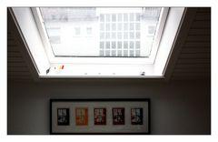 (Dach) Fenster
