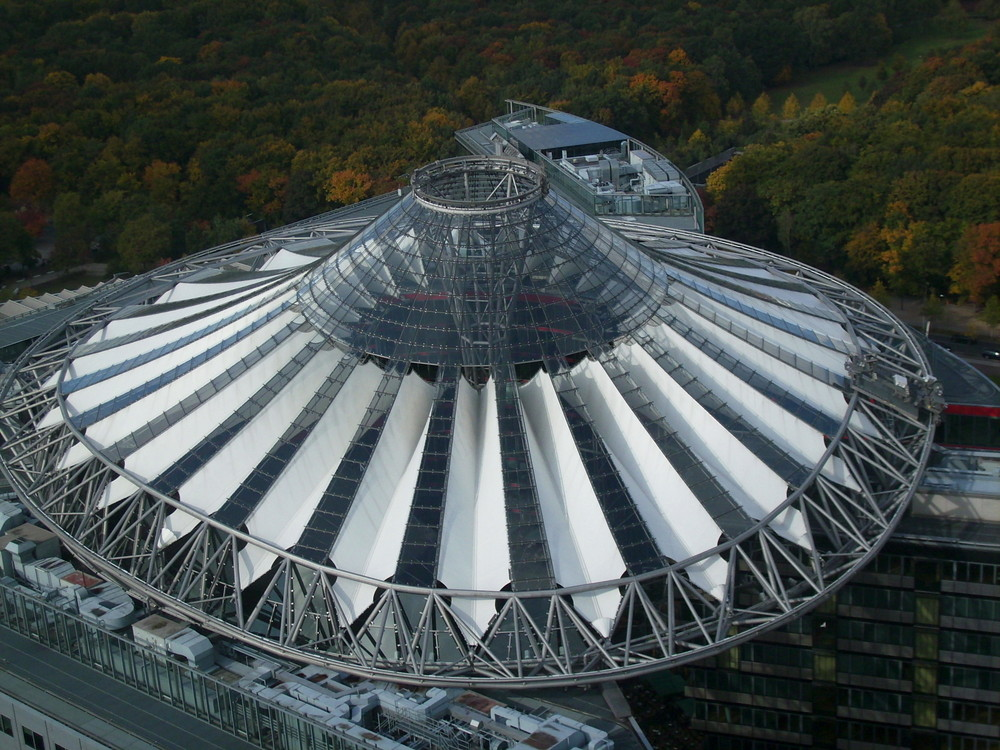 Dach über dem Wald