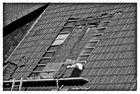 Dachfenster Vorarbeiten