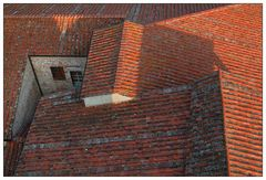 Dachlandschaft in Lucca