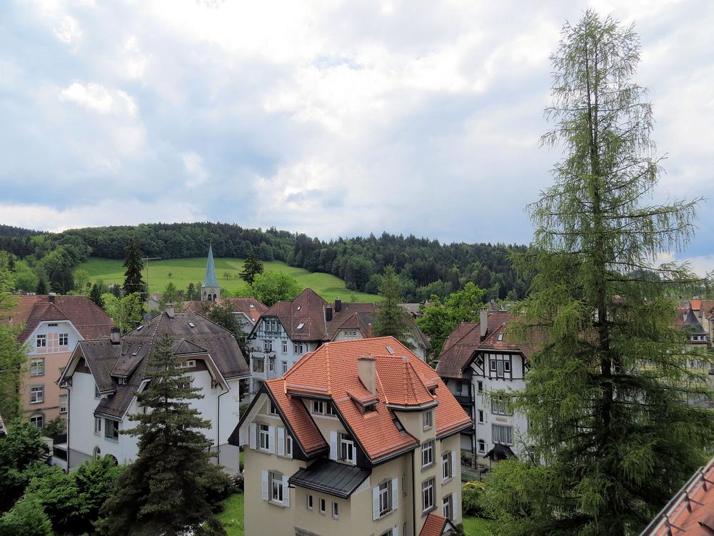 Dachlandschaft St. Georgens / St. Gallen