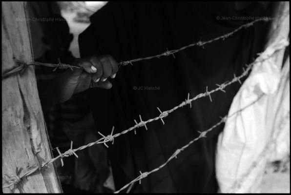 DADAAB le plus grand camp de réfugiés du monde (4)