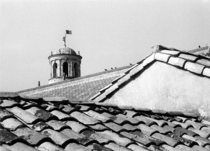 Dächer von Avignon