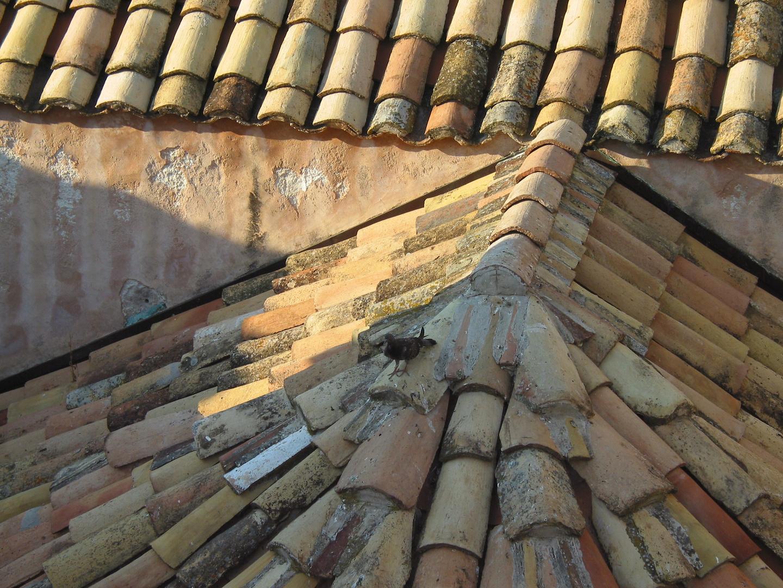 Dächer von Dubrovnik