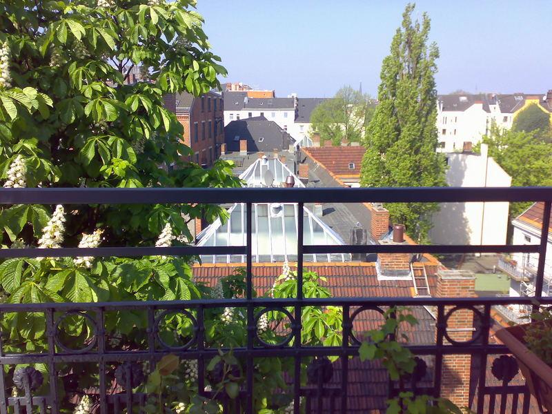 Dächer von St. Pauli