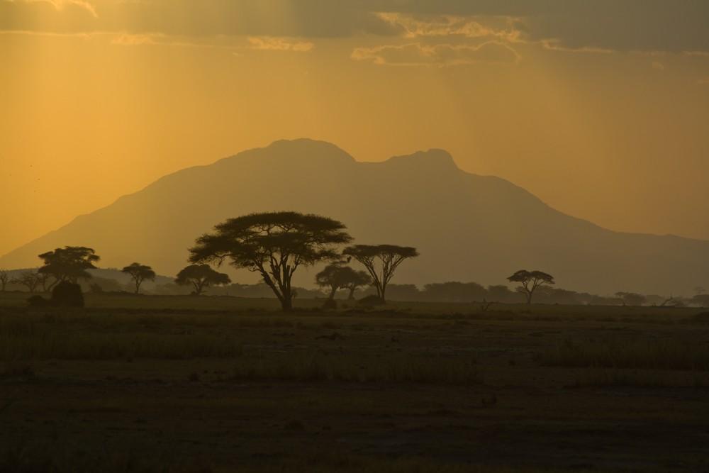 Dämmerung in Afrika