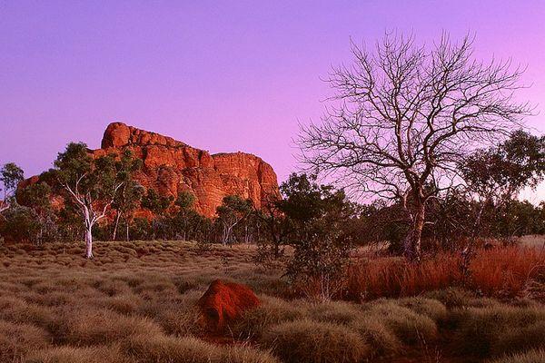 Dämmerung in den Bungle Bungles, Westaustralien