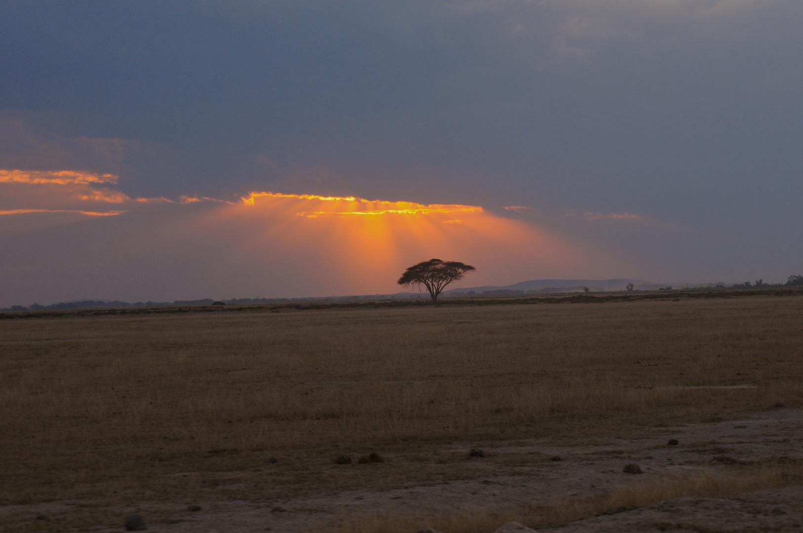 Dämmerung in Kenia