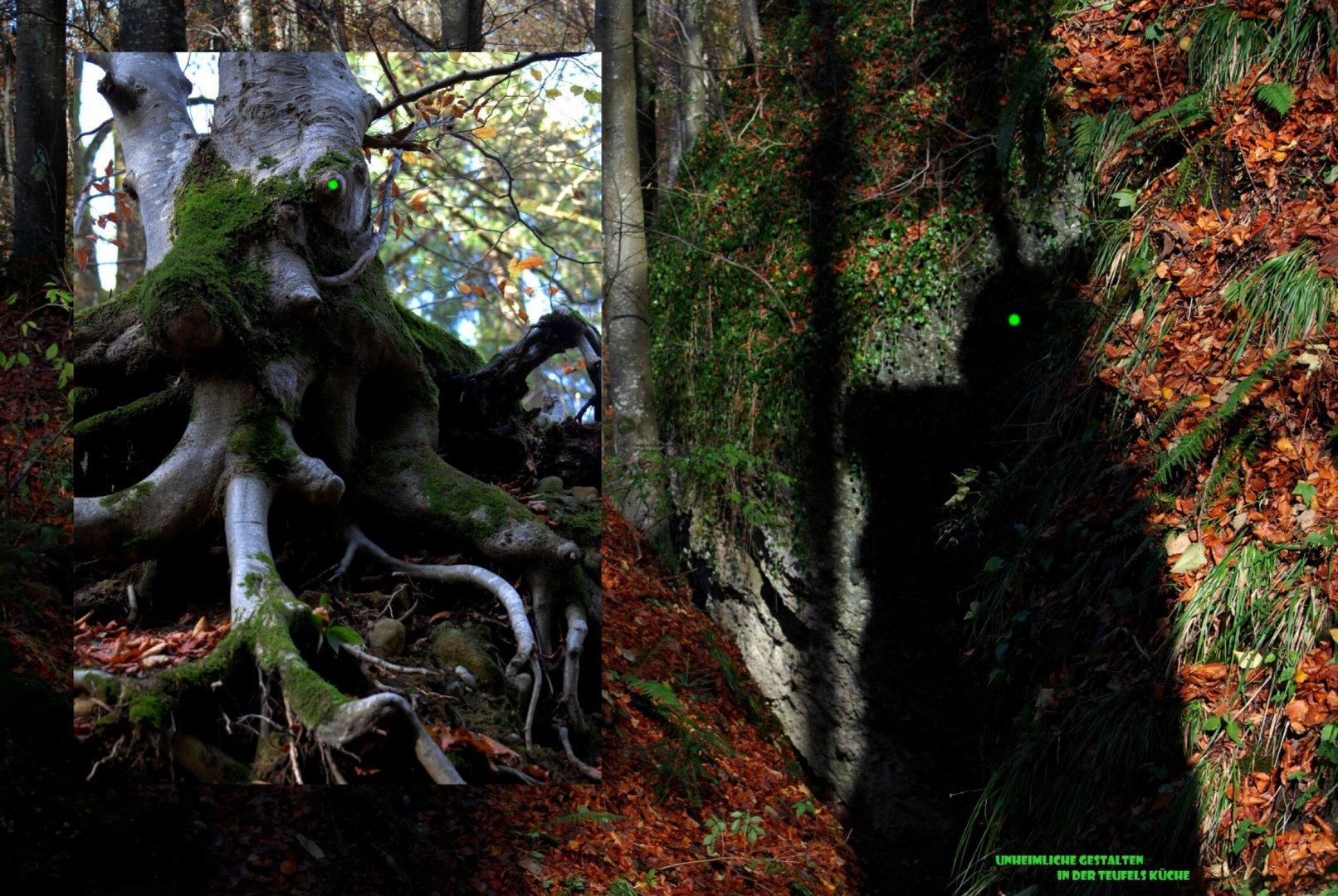 Dämonen in den Wäldern