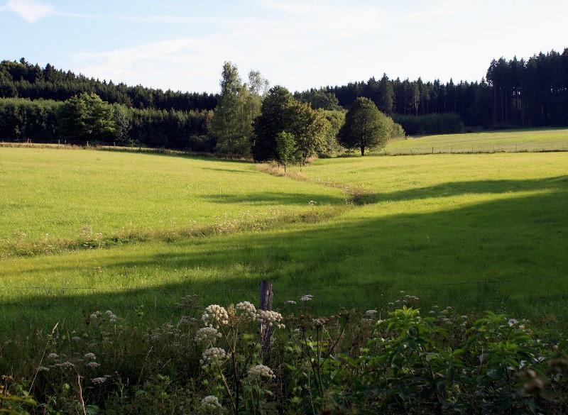 Daheim im Voralpenland