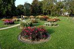 Dahlienschau im Nordpark in Bielefeld