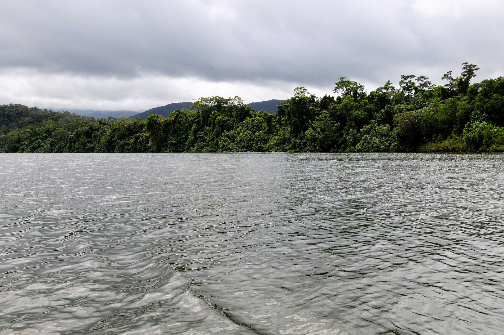 Daintree, River Cruise