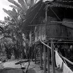 Dajak-Haus 1984, Kalimantan Timur