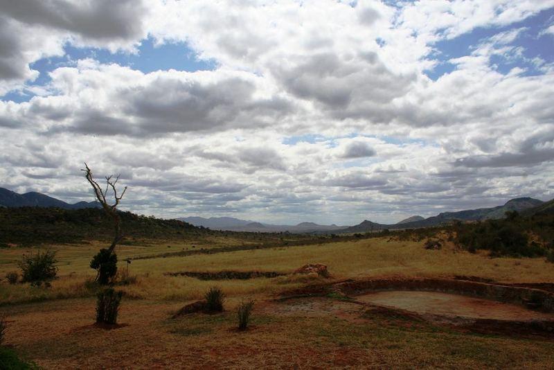 Dal Kenya3