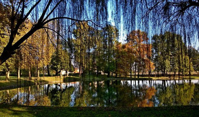 dal palcoscenico della natura l'autunno presenta i suoi colori