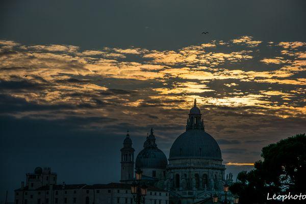 Dal Piazza San Marco Venezia