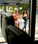 ...dall'autobus delle 13.00...il piacere di guardare il bello...