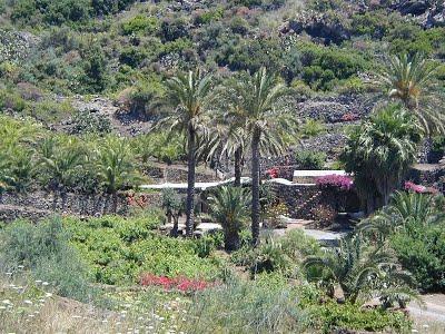 Dammuso Magia Pantelleria