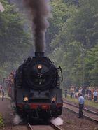 Dampf im Brexbachtal (4)