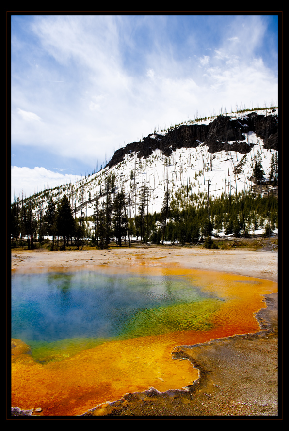 Dampfender Boden Im Yellowstone Nationalpark