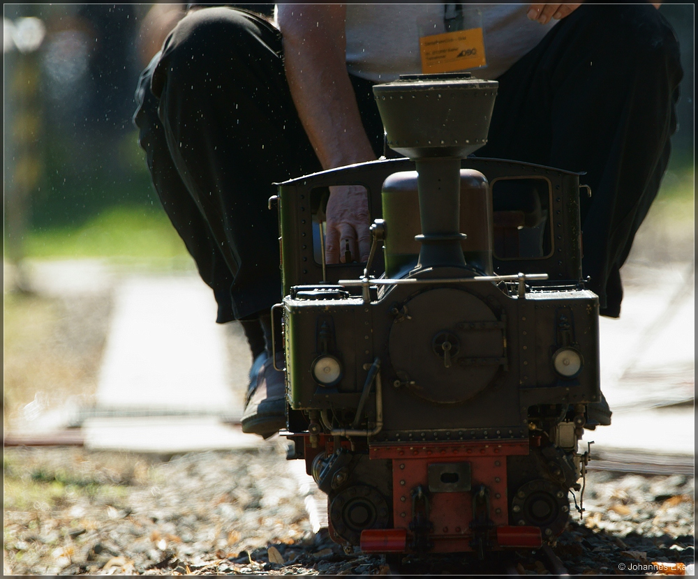 Dampfgartenbahn III