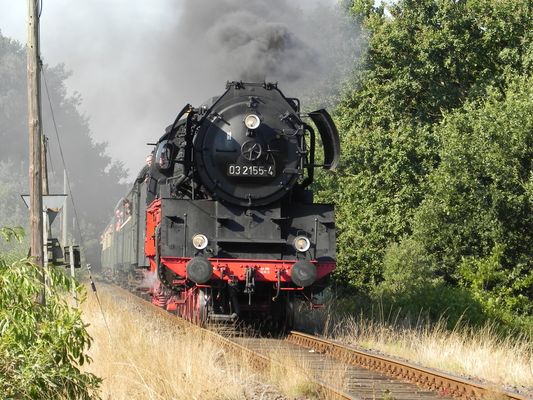 Dampflok 03 2155-4