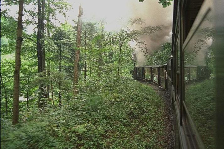 Dampfzug im Bregenzerwald